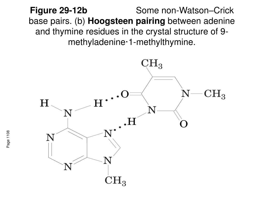 Figure 29-12b