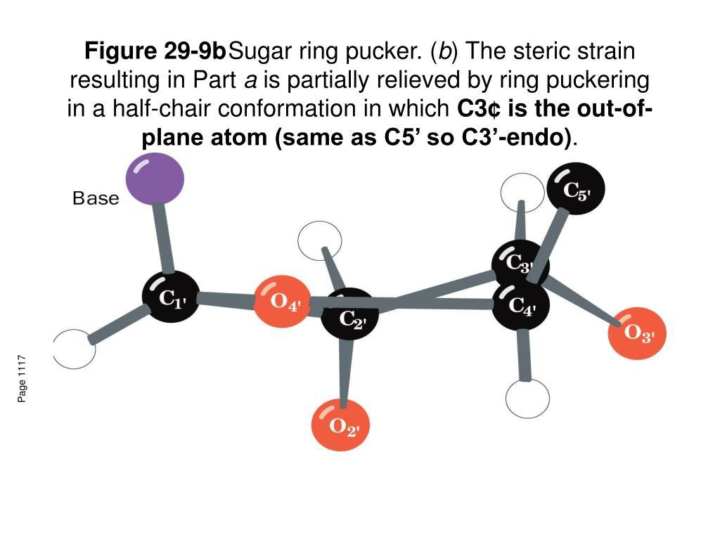 Figure 29-9b