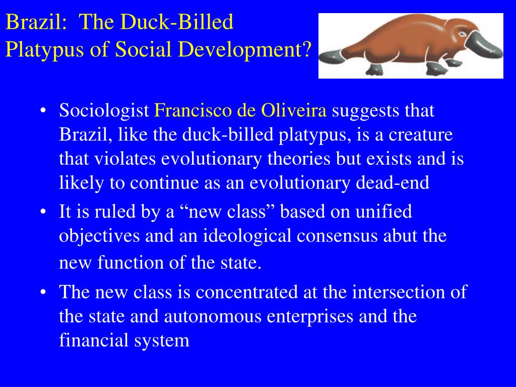 Brazil:  The Duck-Billed