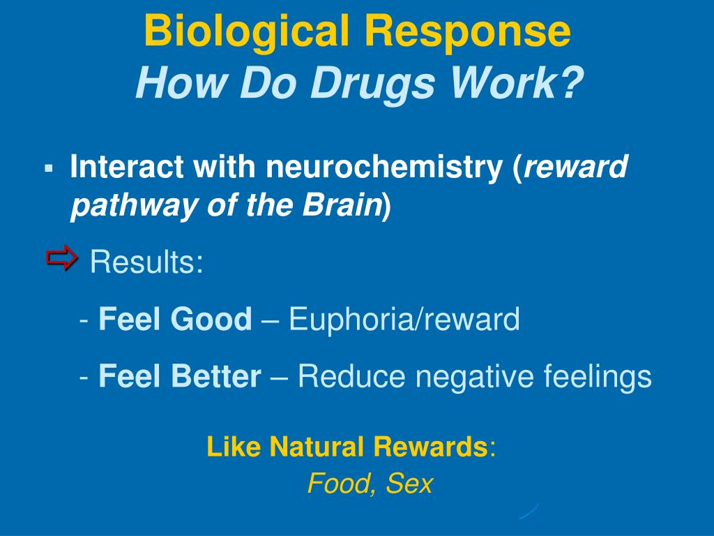 Interact with neurochemistry (