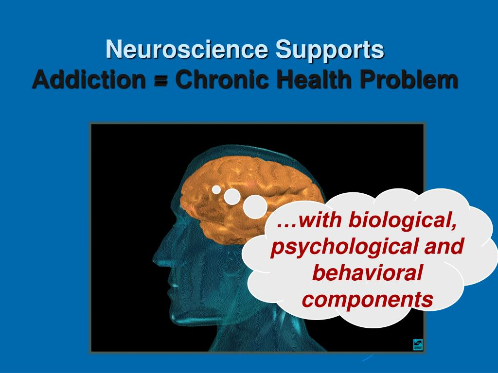 Neuroscience Supports