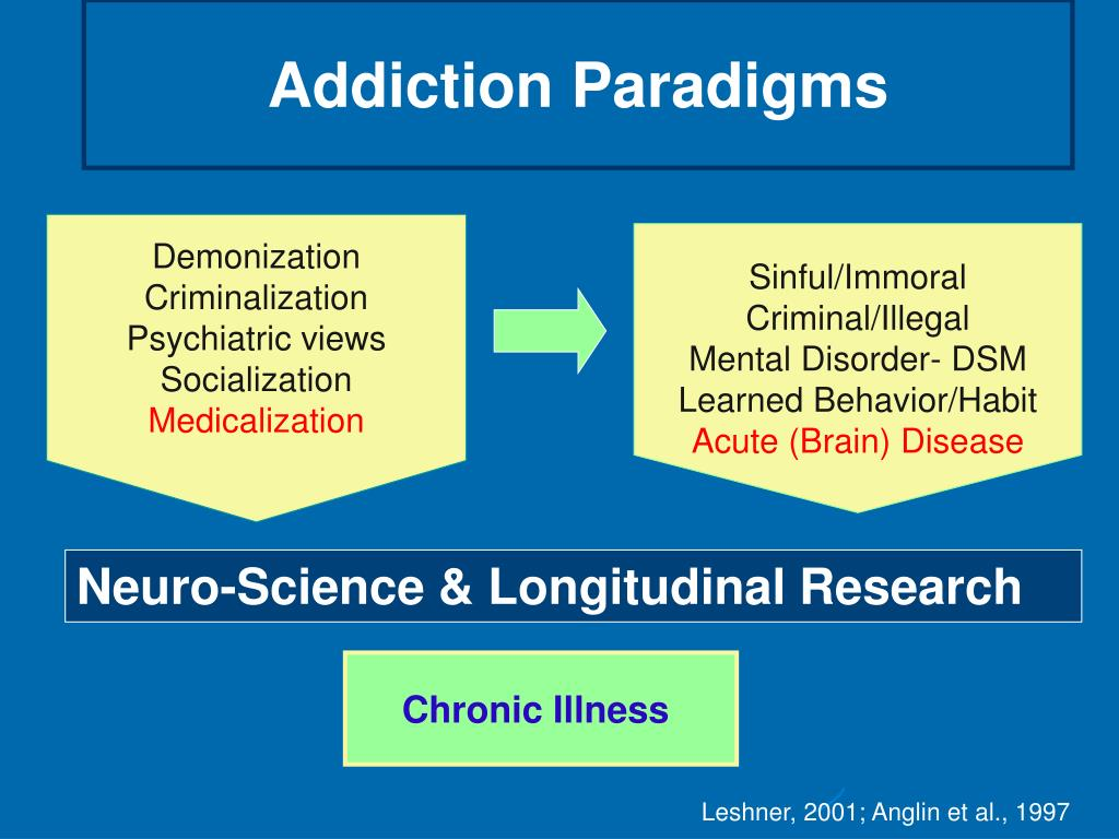 Addiction Paradigms