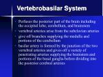 vertebrobasilar system