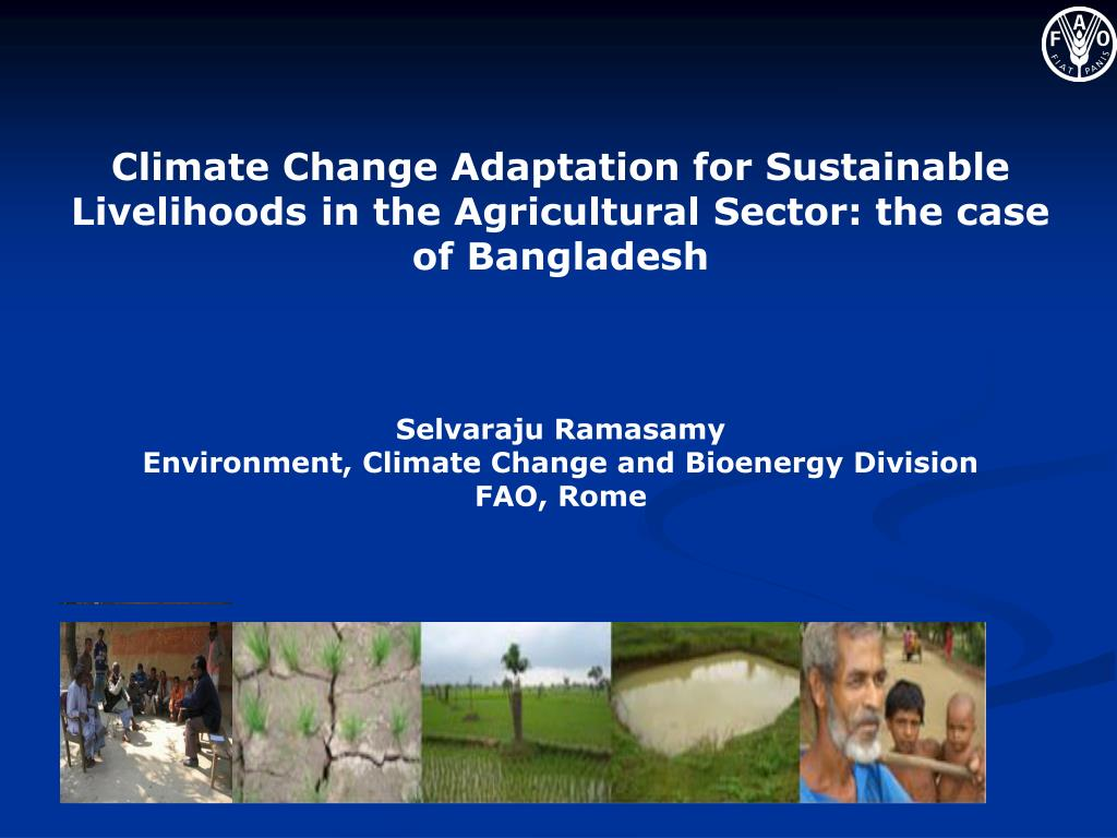 Climate Change Adaptation for Sustainable Livelihoods in the Agricultural Sector: the case of Bangladesh