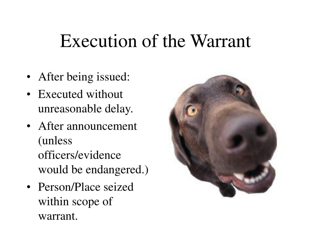 Execution of the Warrant