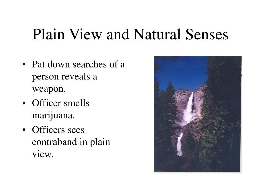 Plain View and Natural Senses