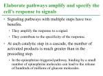 elaborate pathways amplify and specify the cell s response to signals