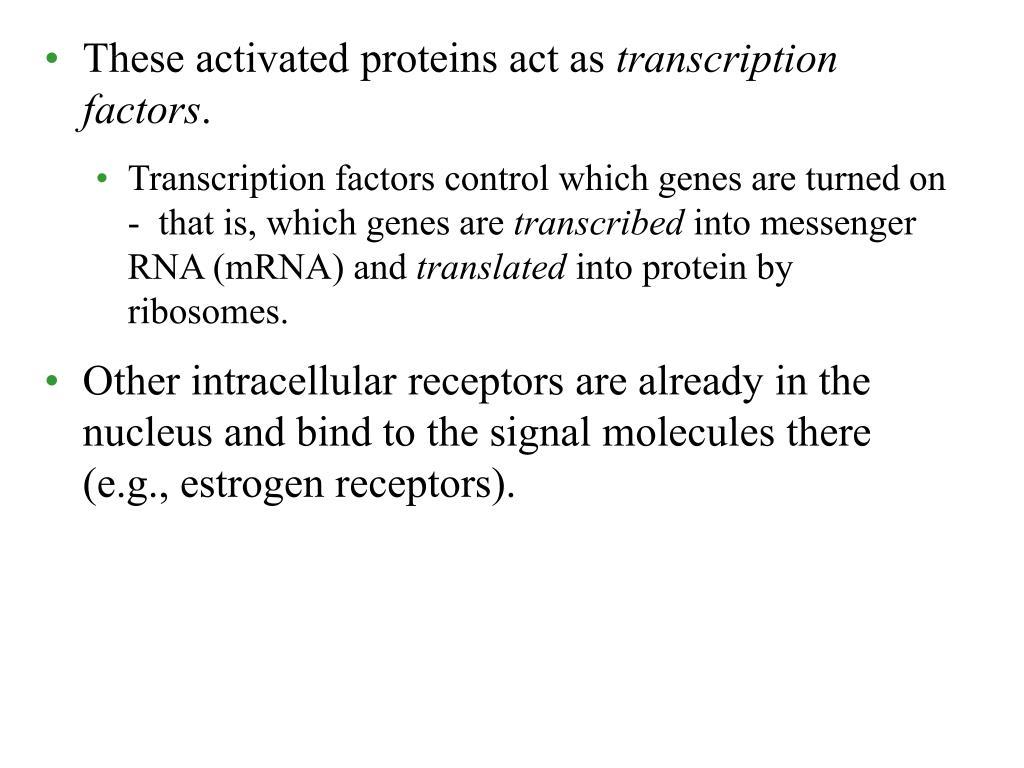 These activated proteins act as