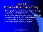 building customer based brand equity
