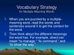 vocabulary strategy for multiple meaning words8