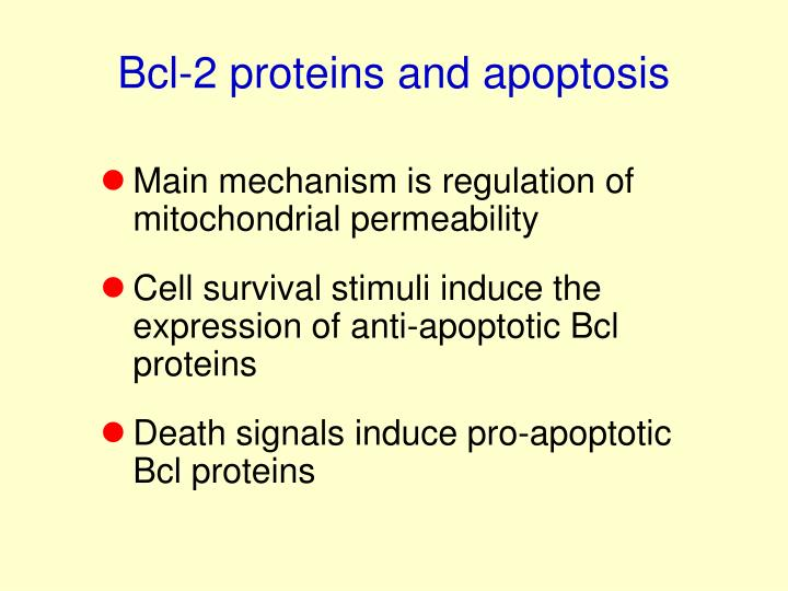 Bcl-2 proteins and apoptosis
