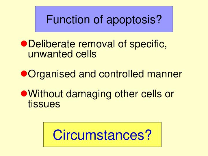 Function of apoptosis?