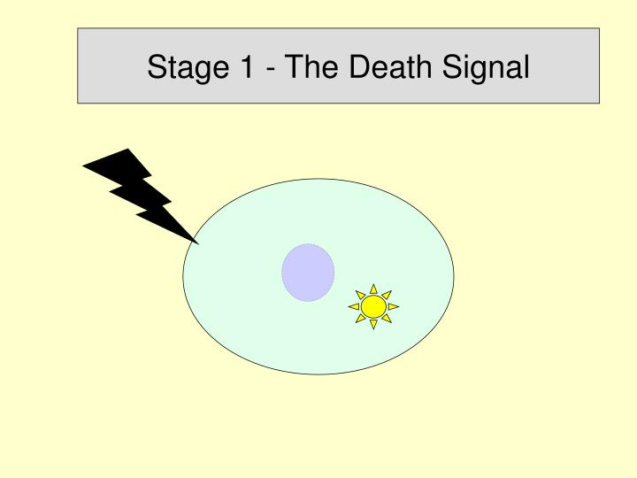 Stage 1 - The Death Signal