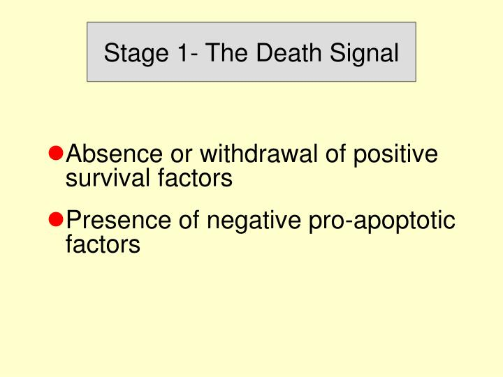 Stage 1- The Death Signal