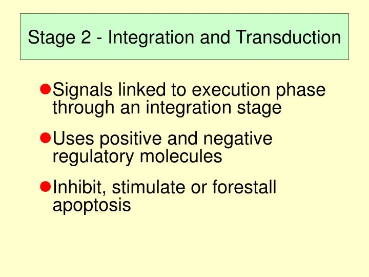 Stage 2 - Integration and Transduction