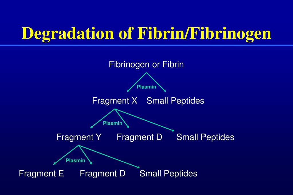 Fibrinogen or Fibrin