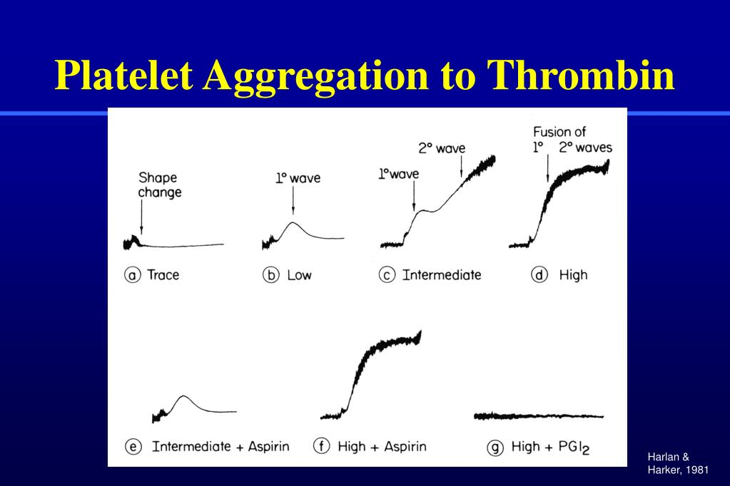 Platelet Aggregation to Thrombin