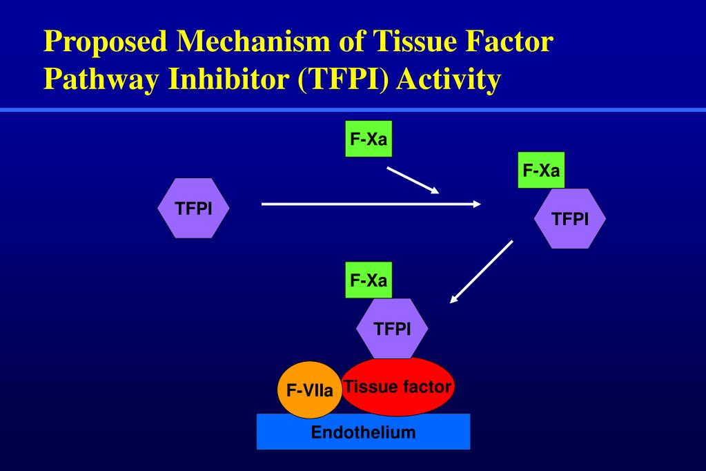Proposed Mechanism of Tissue Factor Pathway Inhibitor (TFPI) Activity
