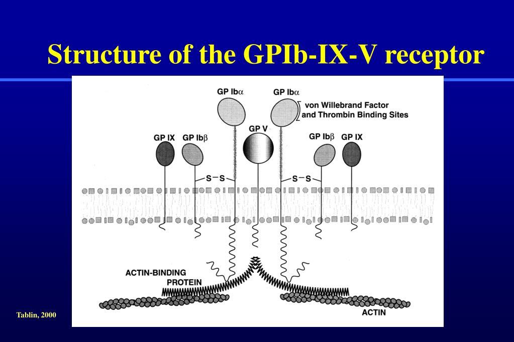 Structure of the GPIb-IX-V receptor