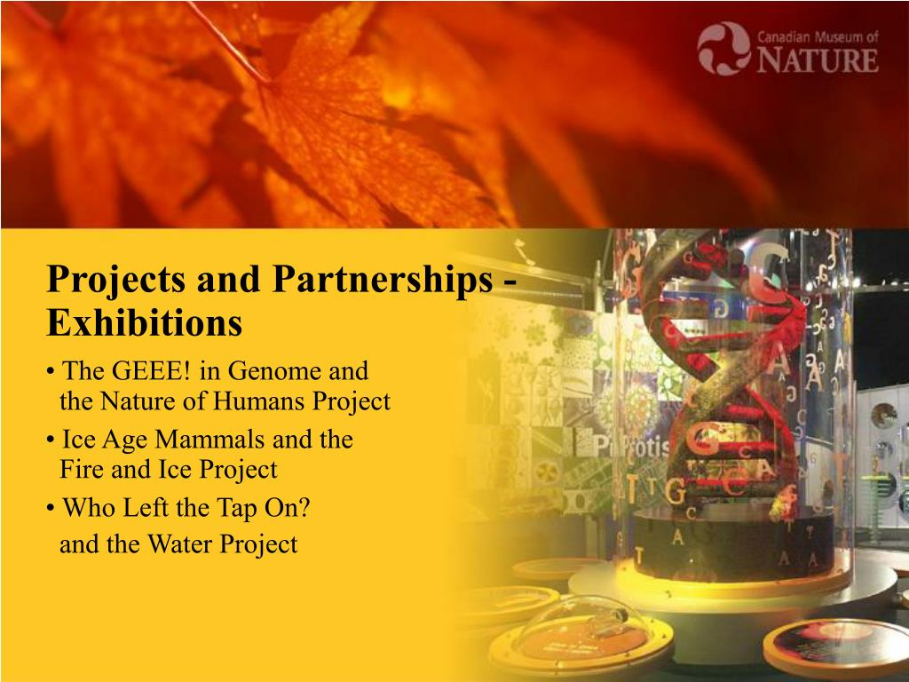 Projects and Partnerships - Exhibitions