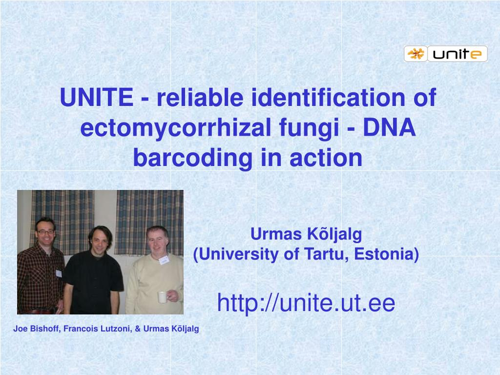 UNITE - reliable identification of ectomycorrhizal fungi - DNA barcoding in action