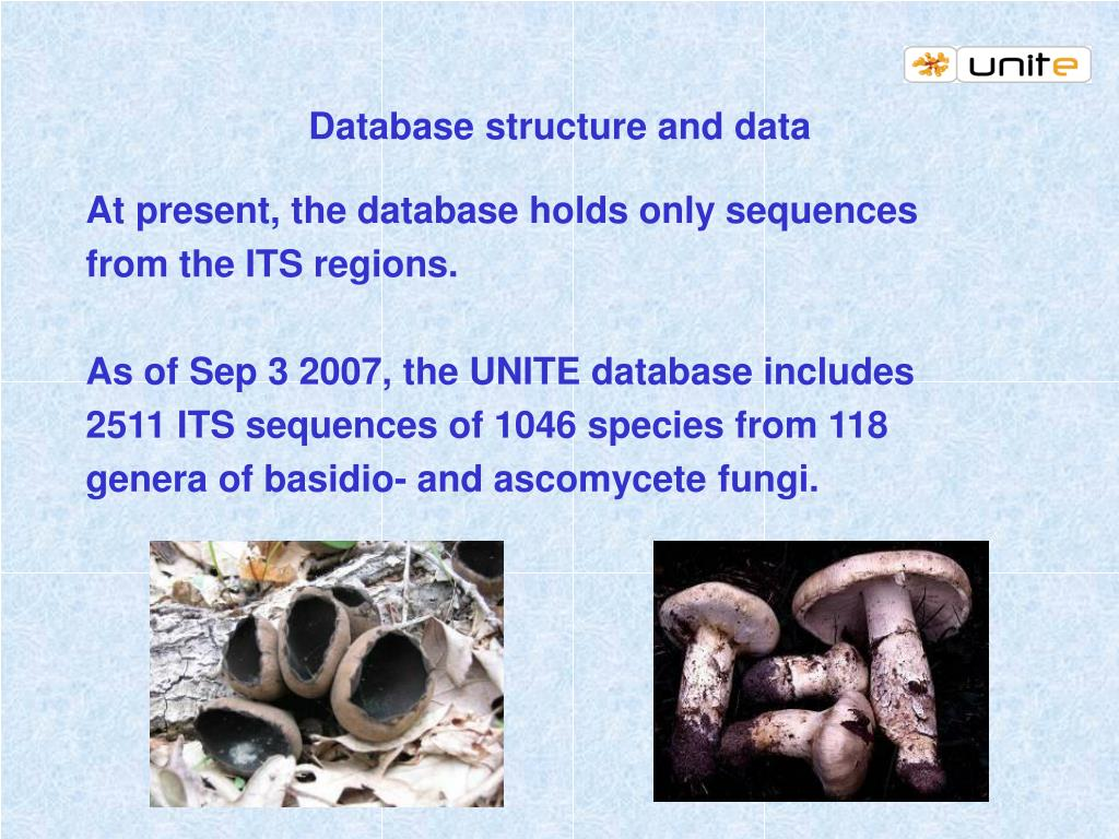 Database structure and data