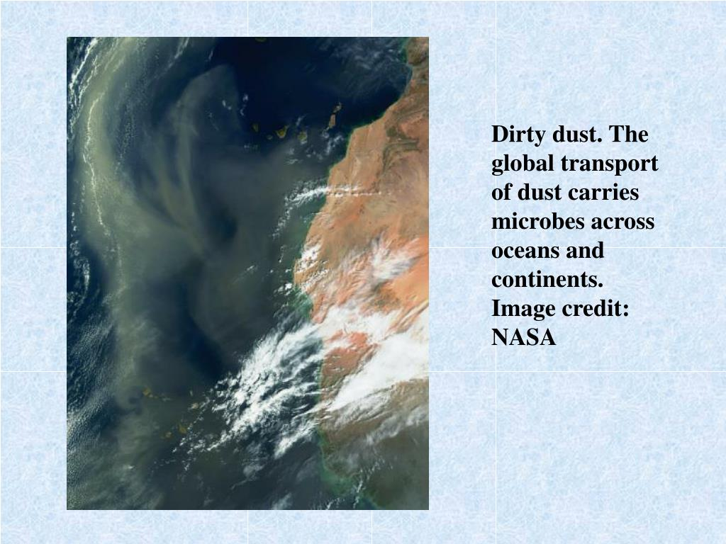 Dirty dust. The global transport of dust carries microbes across oceans and continents.