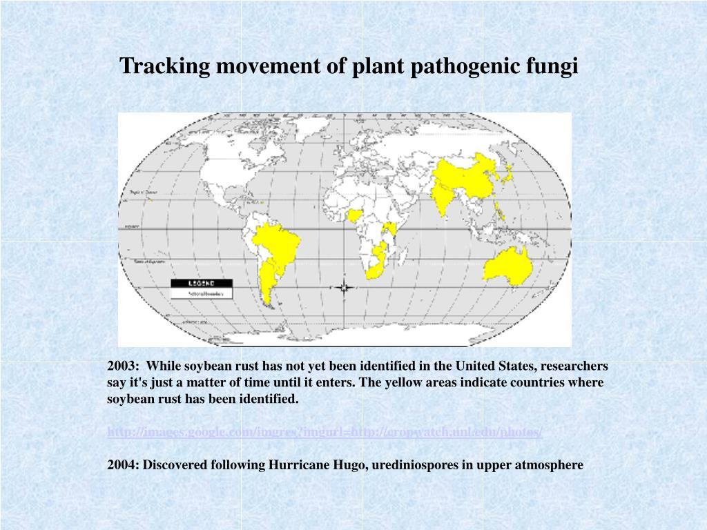 Tracking movement of plant pathogenic fungi