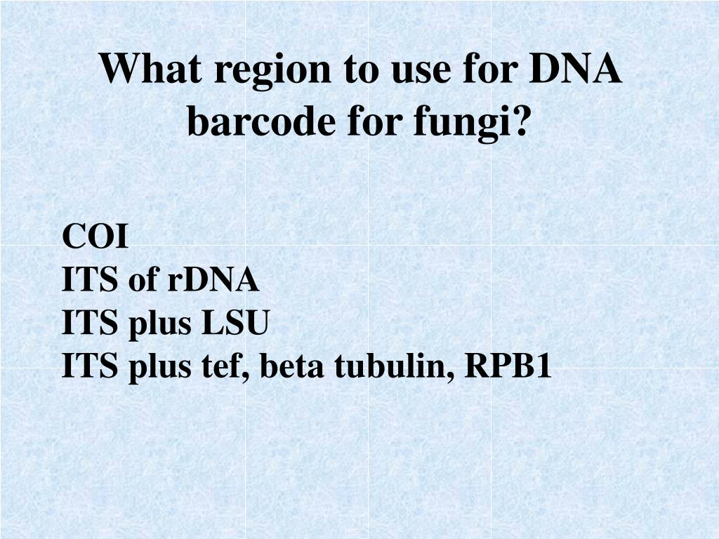 What region to use for DNA barcode for fungi?