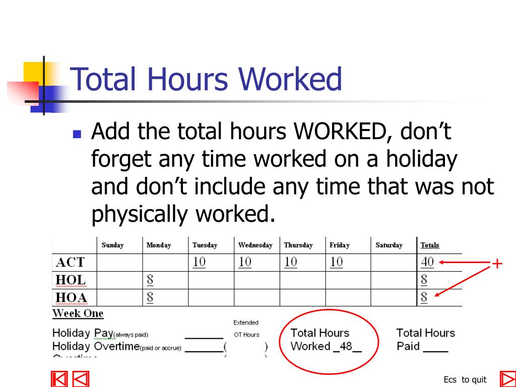 Total Hours Worked