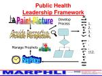 public health leadership framework