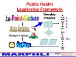 public health leadership framework10