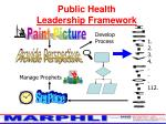 public health leadership framework13