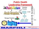 public health leadership framework16