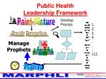 public health leadership framework18