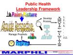 public health leadership framework8