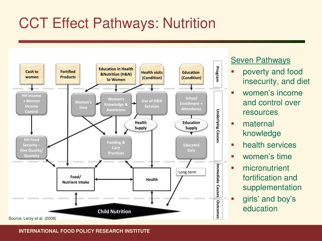 CCT Effect Pathways: Nutrition