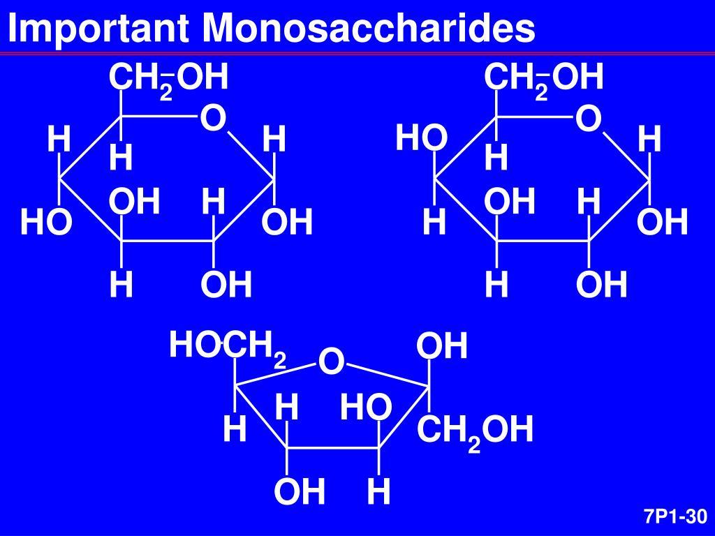 Important Monosaccharides