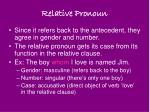 relative pronoun6