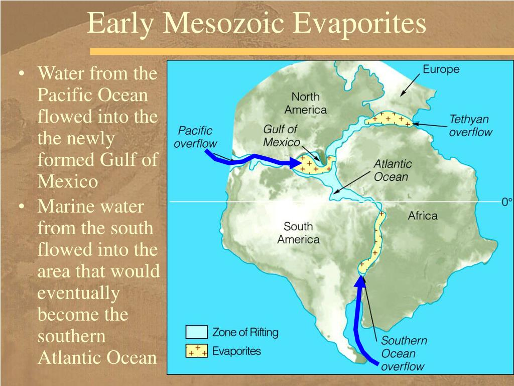 Early Mesozoic Evaporites