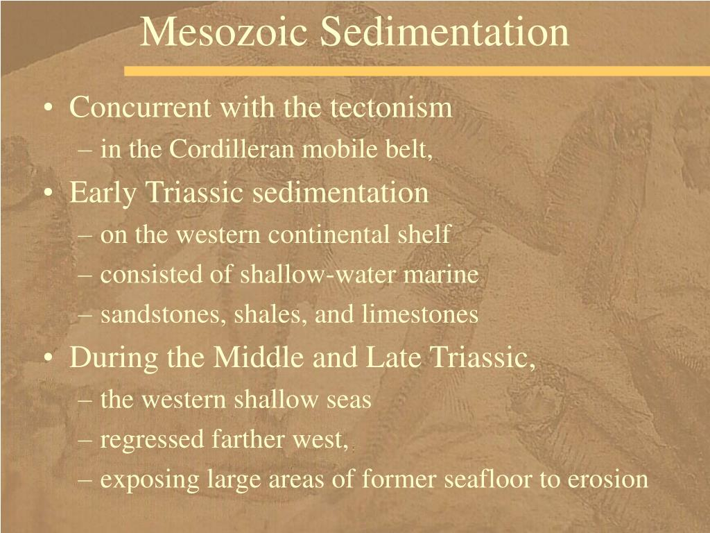 Mesozoic Sedimentation