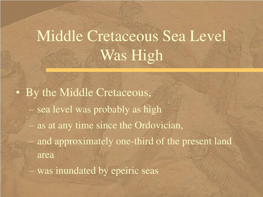 Middle Cretaceous Sea Level Was High