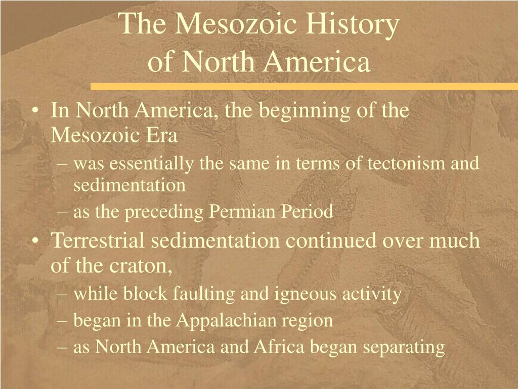 The Mesozoic History