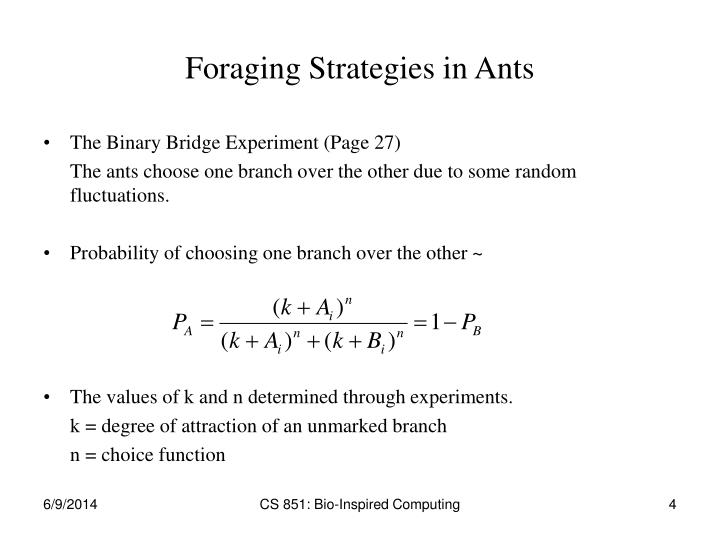 Foraging Strategies in Ants