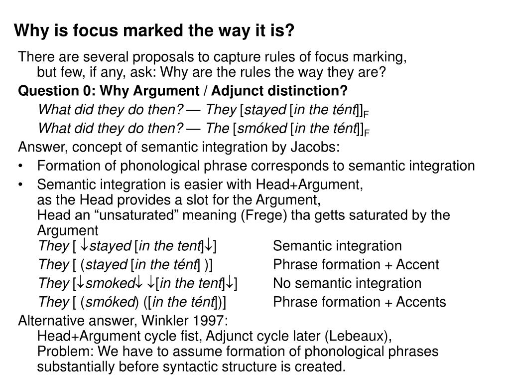 Why is focus marked the way it is?
