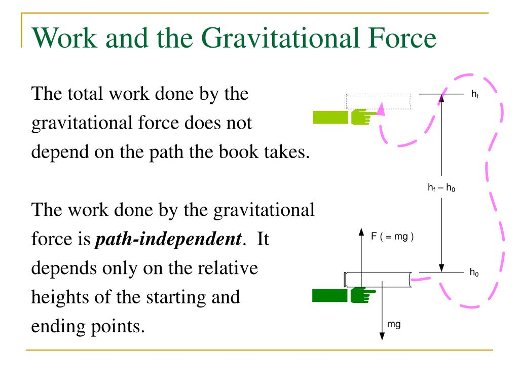 Work and the Gravitational Force