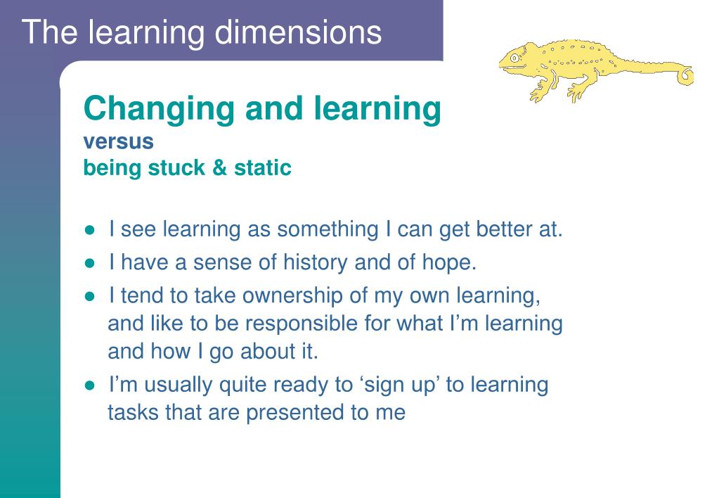 The learning dimensions