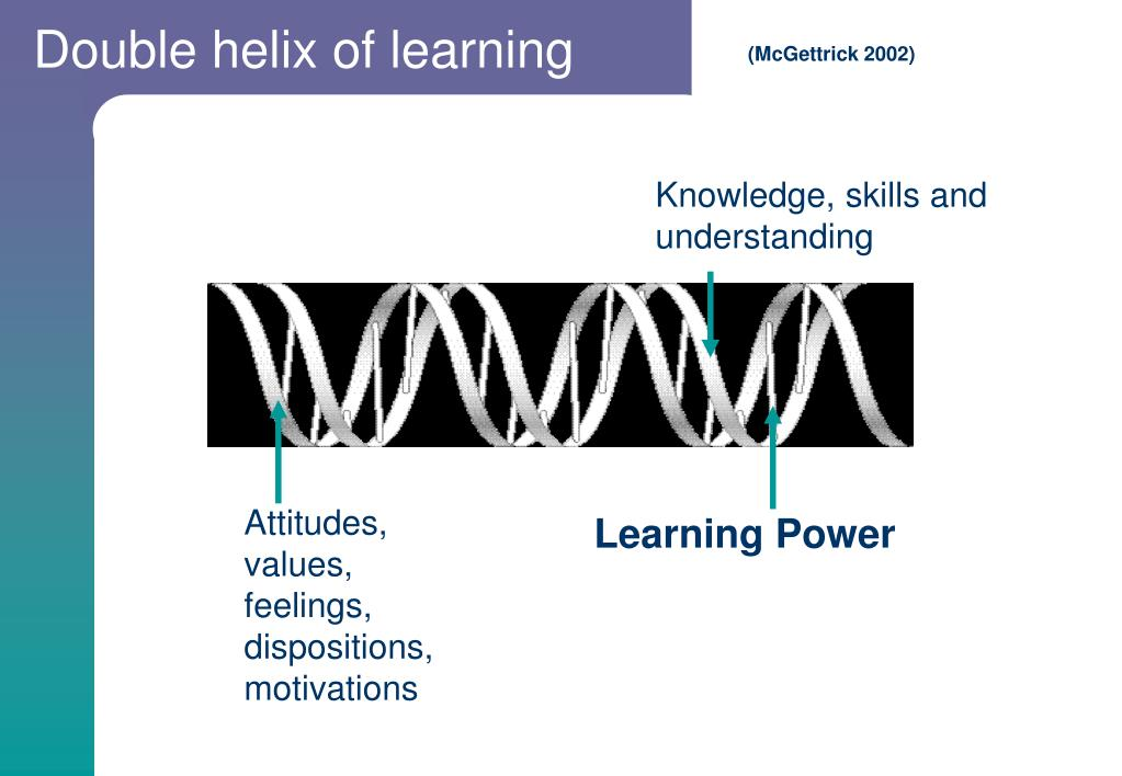 Double helix of learning
