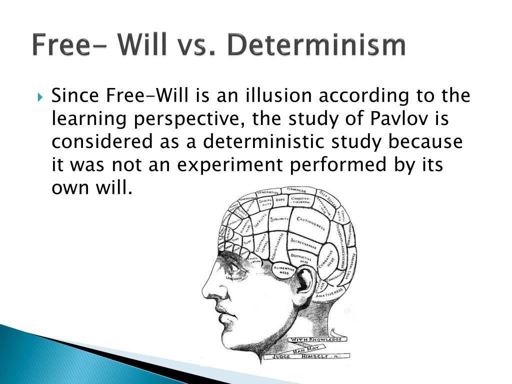 """determinism vs freewill Omar chahine phi2010 october 17, 2014 word count: 560 determinism vs free will """"determinism is the thesis that everything that occurs happens of necessity""""."""