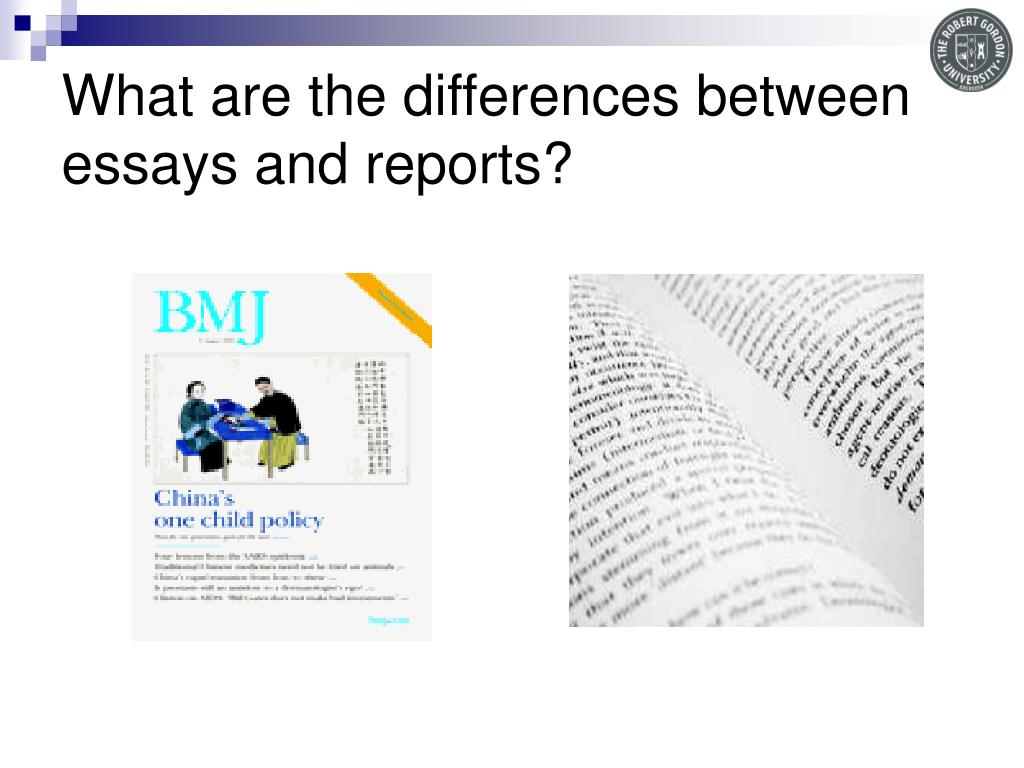 What are the differences between essays and reports?